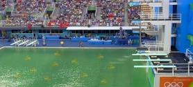 memes-piscina-verde-8.jpg.jpeg