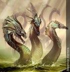 hidra.jpg
